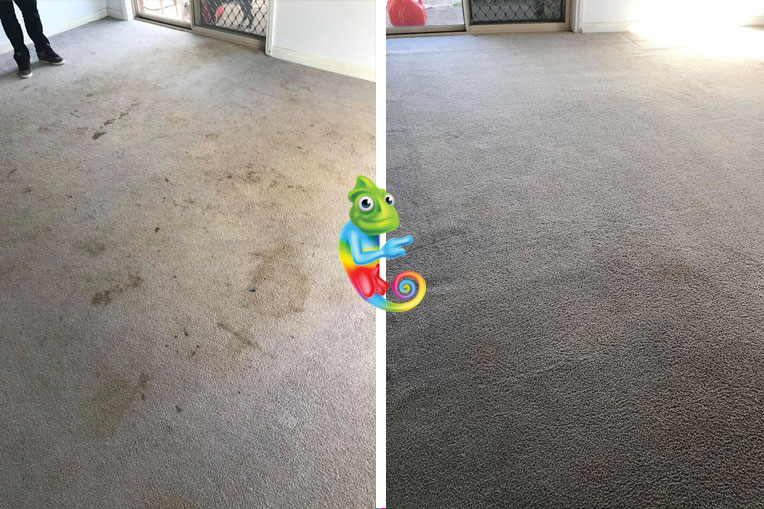 Restore your existing carpet colour